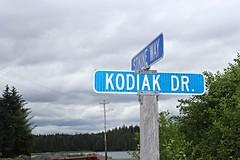 013/365: Kodiak Drive (aaronwesleyray) Tags: roadsign road alaska sky clouds trees blue