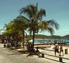 Buzios (Imthearsonist) Tags: buzios brasil brazil beach palmtree people sunny traveling holidays tourism