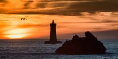 _D816924 : coucher de soleil sur le phare du Four (Brestitude) Tags: phare lighthouse four porspoder melgorn roche sunset coucher soleil finistère été summer bretagne brittany breizh mer sea iroise brestitude ©laurentnevo2016