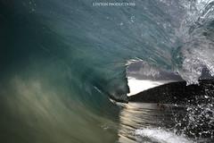 IMG_3672 copy (Aaron Lynton) Tags: makena big beach wave waves barrel bigbeach lyntonproductions canon 7d 580exii hawaii