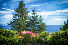 View from Pemaquid Lighthouse Park (crziebird) Tags: atlantic ocean pemaquid lighthouse park