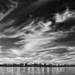 Madison Skyline (Madison Guy) Tags: madison wi skyline capitol lake reflections lakemonona bw clouds sky redfilter