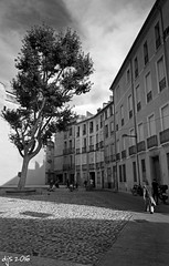 Perpignan (Wipeout Dave) Tags: perpignan blackandwhite town france francais pyrnesorientales midipyrnes languedocroussillon djs2016 davidsnowdonphotography canoneos1100d wipeoutdave