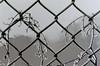 dutch winter (37) (bertknot) Tags: winter dutchwinter dewinter winterinholland winterinthenetherlands hollandsewinter winterinnederlanddutchwinter