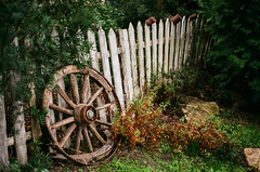 The Wheel And The Fence ~ Explored (intrazome) Tags: old film nature beautiful wheel fence garden outside nikon dof antique edenproject eden f80 magical