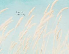 Touch the sky (Karin A ~) Tags: blue summer sky texture touch touchthesky photographybykarina