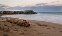 Dreams of Paradise (Brett.Alexander) Tags: longexposure beach water log rocks paradise waves puertorico timeexposure sanjuan february jetti ndfilter neutraldensity canong12