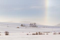 Sun dog (Arina Habich) Tags: ranch blue winter sky sun white snow cold nature weather rainbow colorado spectrum farm bluesky rockymountain parhelion agriculture multicolored sundog steamboatsprings routtcounty mocksun westernslopes reflectionoflight besidethesun phantomsun