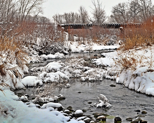 Poudre River and Trestle