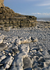 Limestone Beach (Carolbreeze99) Tags: sea cliff beach southwales landscapes rocks erosion formation limestone