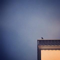 眺望 (唯尔的flickr) Tags: 风景 建筑 摄影 手机摄影 极简
