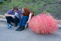 Tumbleweed Love (-Dons) Tags: street boy usa girl austin texas unitedstates tx sxsw curb tumbleweed raineystreet