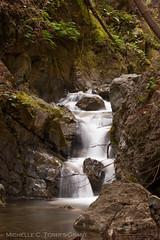 West Fork Limekiln Creek (flygrl67) Tags: california park ca longexposure nature creek forest coast march waterfall woods state pacific bigsur redwood lime kiln cascade limekiln latewinter westfork lowiso