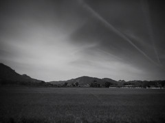 Cloud Streaks Over The Ranch ( edwardconde) Tags: ipad bodycap olympusepl1 editedontheipad snapseed edwardconde73 photographersontumblr olympusbcl