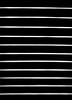 تُجَريّدُ (Saad AL shuhrl ♥ | سعد الشهري) Tags: saad الله عربي بس السرعه عبد بنت الخليج دبي سعد صوره الامارات تصوير الوان مول الرياض ولد المملكه حيوان سعودي فلكر مصوره سعوديه بورتريه مسلم اسود قطه العربي همستر كام نيكون السعوديه كانون العربيه ابيض الشهري مصور فوتو فوتوشوب مباني انجليزي جده قروب تجريد مكرو همتارو سوني مايكرو معدل عدسه محترف تعديل كامره لايت نايكون حيونات سيجما مثبت احترافي يوتيوب روم فائق فوتغرافي تويتر بتري يانسونك تكويا همترو كامراه ترايبد ريموات