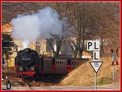 """Historic Narrow Gauge Railway """"Molli"""" (Ostseeleuchte) Tags: germany deutschland mecklenburg molli dampfeisenbahn baddoberan schmalspurbahn narrowgaugerailwaymolli historischebäderbahn"""