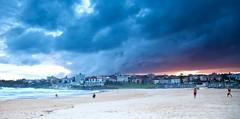 Hand Stand - Bondi 2013 (Paul Amestoy) Tags: ocean sea summer beach water bondi surf pacific sydney australia