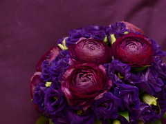 Purple wedding bouquet (kromka) Tags: dark purple violet ranunculus velvet lisianthus  weddingbouquet eustoma