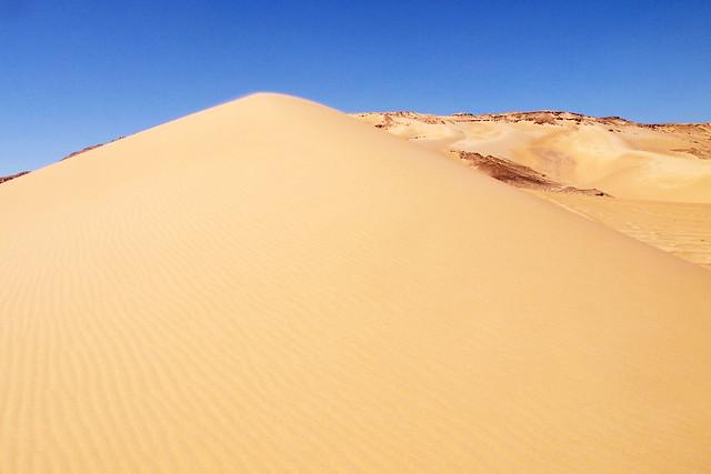 <p>さらさらすぎて登れない砂の丘。  </p>