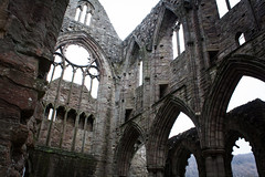 "Tintern Abbey • <a style=""font-size:0.8em;"" href=""http://www.flickr.com/photos/32236014@N07/8635055521/"" target=""_blank"">View on Flickr</a>"