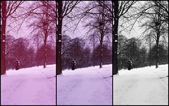 Options (Gabo Barreto) Tags: park uk winter england snow yorkshire leeds e6 roundhay wintry colourcast