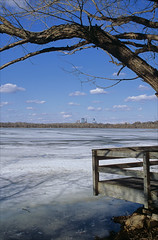 frozen harriet (Ron Layters) Tags: usa lake tree ice water minnesota skyline clouds america geotagged frozen unitedstates pentax jetty branches shoreline minneapolis slide transparency fujichrome provia frozenlake pentaxmz10 lakeharriet hennepincounty patform ronlayters slidefilmthenscanned mz10 cumulsstreets geo:lat=4491776893543575 geo:lon=932998121016996