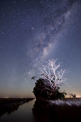 Milky Way (Indigo Skies Photography) Tags: camera trees sky water night digital rural lens stars photography photo aperture nikon exposure flickr image farm country australia victoria iso deadtree galaxy nightsky paddock milkyway southernhemisphere echuca southernsky irrigationchannel galacticcentre tokina1116mmf28 nikond7000 raychristy ladyaugustaroad kelshroad