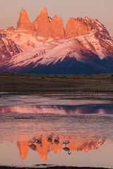 Calm waters (eMinte) Tags: awasi flaminfo flamingo flamenco phoenicopterus torresdelpaine sunrise amanecer dawn