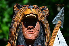 I am a Man.... (tripod_treker) Tags: stumpcarvings indian spear feathers bear bearcamouflage nikond600 nikonafsvrzoomnikkor70300mmf4556gifedlens