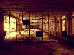 szkoa 4 (h_9000) Tags: pripyat chernobyl czernobyl ukraine ukraina atomic disaster katastrofa jdrowa nuclear eletrownia atomowa power prypiat esi tower cooling plant ukrainki 16th floor urban september flats 2016 decay bloki abandoned buildings trees chemicals hal9000 reaktor rubble 1986 reactor hal9ooo blocks anniversary 30th glass drzewa hawkeye dirt soviet union sowieci lenin wladimir wodzimierz vladimir zsrr ussr