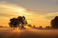 The early bird catches the worm (uw67) Tags: landscape niederrein kleve sonnenaufgang sunreise landschaft county emmerich