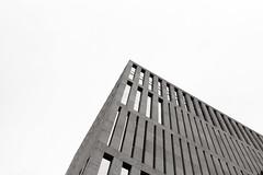 geometric (Luca Scarpa) Tags: film bn bw blackandwhite biancoenero architettura architecture building buildings