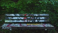 graffiti bench (hshatlden) Tags: nikonphotograph nikontop nikond3100 nikon mpls minnehaha minnehahapark urbanforest urbanart graffiti walkingtrail minnesota mn minneapolis