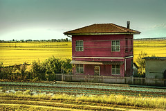Countryside (Douglas M.P.) Tags: field rice risaia campagna countryside country italia italy rails rotaie natura natur