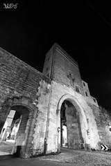 Porta Molino, dall'esterno delle Mura Comunali, Padova (Davide Anselmi) Tags: portamolino porta molino mura muracomunali padova bianconero bn blackwhite bw davideanselmi 2016 italia
