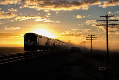 The Morning Capitol (Wheelnrail) Tags: amtrak amtk capitol limited 29 p42dc morning sunrise wawaka indiana ns chicago line norfolk southern codeline clouds passenger train trains locomotive ge railroad rails beautiful fog