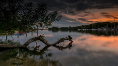 Tegler See (xfoTOkex) Tags: landscape long exposure water berlin tegler see tree reflections sunset nikon d800 leading line sky clouds