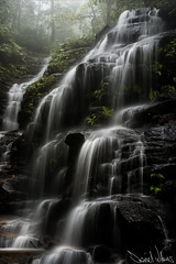 Sylvia Falls in Fog (Daniel Willans) Tags: mist water fog waterfall australia bluemountains falls wentworth nsw sylvia leura