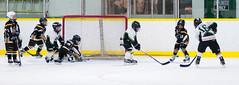 DSC_64670 (michaelinhkong) Tags: canada hockey daniel ottawa feb13 metcalfejets 16feb13