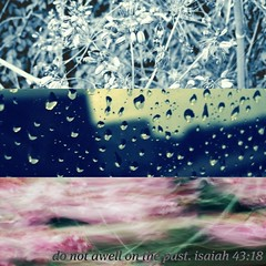 heaven forbid (in time of roses) Tags: blue plants 3 blur nature rain collage typography words flora peace heart time stripes quotes bible healing past recovery letgo friedrichnietzsche bibleverse november2012