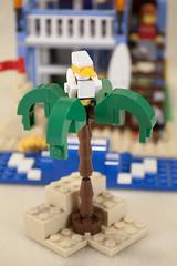 LEGO Seaside House - Seaside House Mode (jessicagreen0202) Tags: house set seaside lego creator 7346