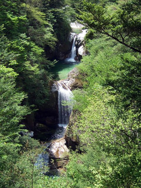 山梨県白州の尾白川渓谷ハイキングコースを爽やかトレッキングの写真