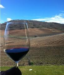 Imagen copa de vino (josemiguel_80) Tags: