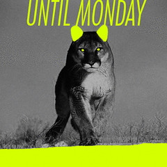 UNTIL MONDAY (Rafael Morales Cendejas) Tags: animal animals mxico df felino animales gif monday until grr gifs visualism rafaelmc gifsters