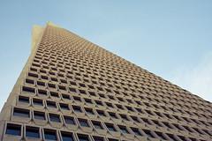 (Eugenia C.) Tags: sf ca building geometric skyscraper arquitectura pyramid edificio transamerica