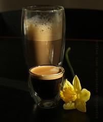 coffee Time... (geraldine fotografie) Tags: flower coffee spring time together espresso cappuccino doppio pavina rememberthatmomentlevel1 rememberthatmomentlevel2 rememberthatmomentlevel3