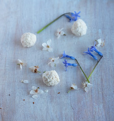 149 (lesyanovo) Tags: blue white flower stain ball wooden candy blossom sweet coconut board petal round campanula bluebell sweetmeat