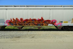 Migee (Sk8hamburger) Tags: railroad art by train painting graffiti paint tag devils rr boxcar graff piece tagging infected freight ibd paint spray mig1 migee infectedbydevils