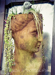 birdbrain1 (Manda's Photography) Tags: reflection statuary birdbrain