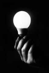 Fading Lights 103/365 (deep blue2) Tags: light bulb holding hands illumination 365 sigma1855mm